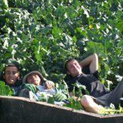 Life at Easter Grangemuir